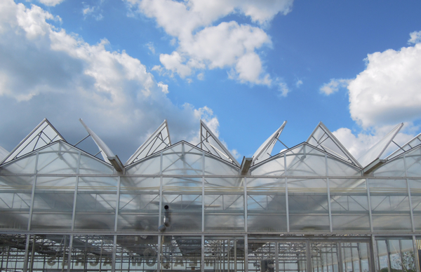 9200 Square Foot Greenhouse